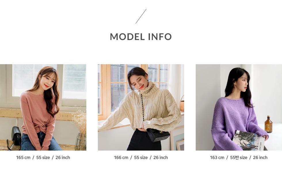 モデルサイズ